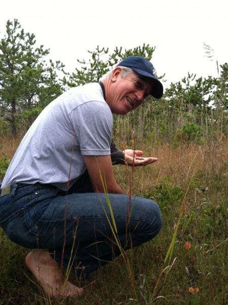 Cranberry picking in New York from viviloveith.com